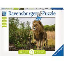 Puzzle 1000 Teile, 70x50 cm, Stolzer Löwe