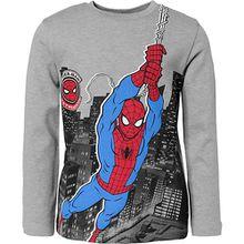 Spider-Man Langarmshirt  grau Jungen Kleinkinder