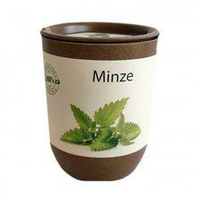 EcoCan Minze