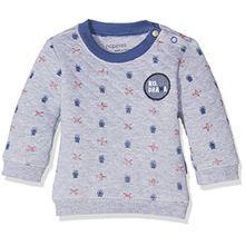 Noppies Baby-Jungen Sweatshirt B Sweater Galesburg, Grau (Light Grey Melange C245), 74