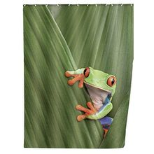 Wenko 20958100 Duschvorhang Frog - waschbar, mit 12 Duschvorhangringen, 100% Polyester, Mehrfarbig
