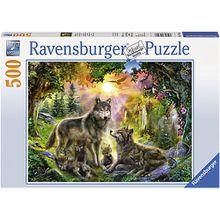 Puzzle 500 Teile, 49x36 cm, Wolfsfamilie im Sonnenschein