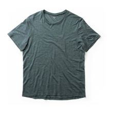 Houdini - Activist Herren Merinofunktionsshirt (grün) - L