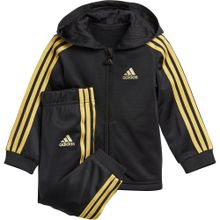 ADIDAS PERFORMANCE Trainingsanzug gold / schwarz