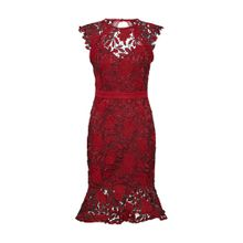 Lipsy Cocktailkleid 'RED AO LACE DRESS(KATE MOVE ON)' rubinrot