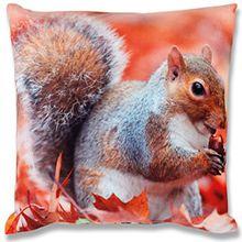 Fotodruck Kissenhülle Kissenbezug mit Motiv, bequem und dekorativ in vielen verschiedenen modernen Designs verfügbar ( Eichhörnchen / 40x40cm )