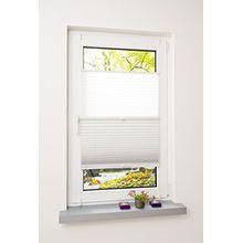Liedeco® Plissee (Day and Night) verspannt mit Klemmträger / 80 x 130 cm weiß-weiß (Breite x Höhe) / lichtdurchlässig und lichtundurchlässig blickdicht stufenlos verstellbar in einem Doppelplissee / verdunkelnde Seite Thermo / leichte Innen-Montage ohne Bohren / 123 montiert / Doppel-Plissee farbig zum Klemmen fürs Fenster in vielen Farben und Größen / Klemmfix-Plissee als Sichtschutz Blendschutz Sonnenschutz und Fensterdekoration innen / Rollos Falt-Plissee Jalousien Zubehör von Liedeco