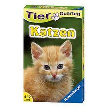 Tier-Quartette: Katzen