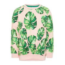 NAME IT Sweatshirt grün / altrosa