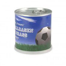 Fußballrasen aus der Dose