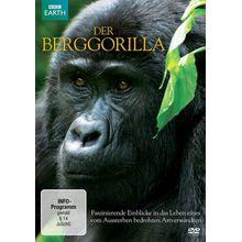 DVD »Der Berggorilla«