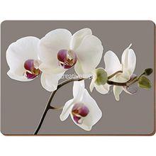 """Creative Tops Tischsets """"Orchid Harmony"""" - 4er Satz"""
