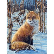 Malen nach Zahlen Artists Collection Fuchs