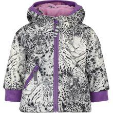 Racoon Winterjacke Lucca Leopard