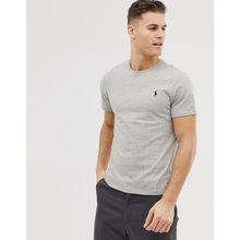 Polo Ralph Lauren – Schlichtes T-Shirt mit Rundhalsausschnitt in Grau
