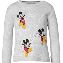 DISNEY Mickey Mouse & friends Langarmshirt grau