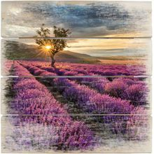 """Holzbild """"Provence"""" lila"""