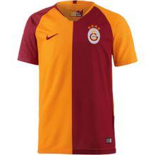 NIKE Fußballtrikot 'Galatasaray Istanbul 18/19 Heim' dunkelorange / dunkelrot