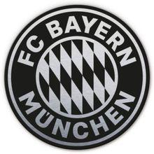 Alu-Dibond mit Silbereffekt FC Bayern Logo schwarz