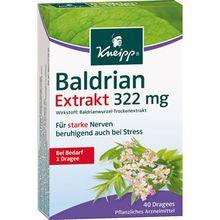Kneipp Gesundheit Nahrungsergänzung Baldrian Extrakt 1 Stk.