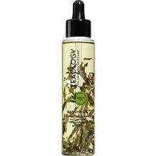 Teaology Pflege Körperpflege Bancha Oil 100 ml