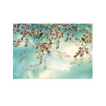 Fototapete Sakura, Komar