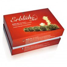 Erblüh-Tee Nachfülldose