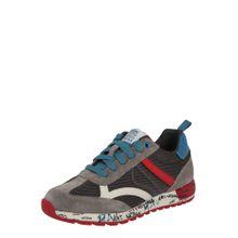 GEOX Schuhe 'ALBEN' blau / grau / rot