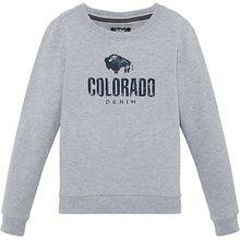 Sweatshirt BRYCE , Organic Cotton grau Jungen Kinder